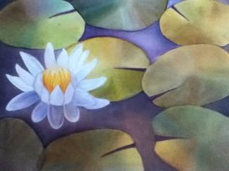 Lotus by Neha Potturu- Watercolors