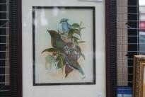 Birds using mixed media