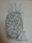Color Pencil Drawing-Neha Potturu